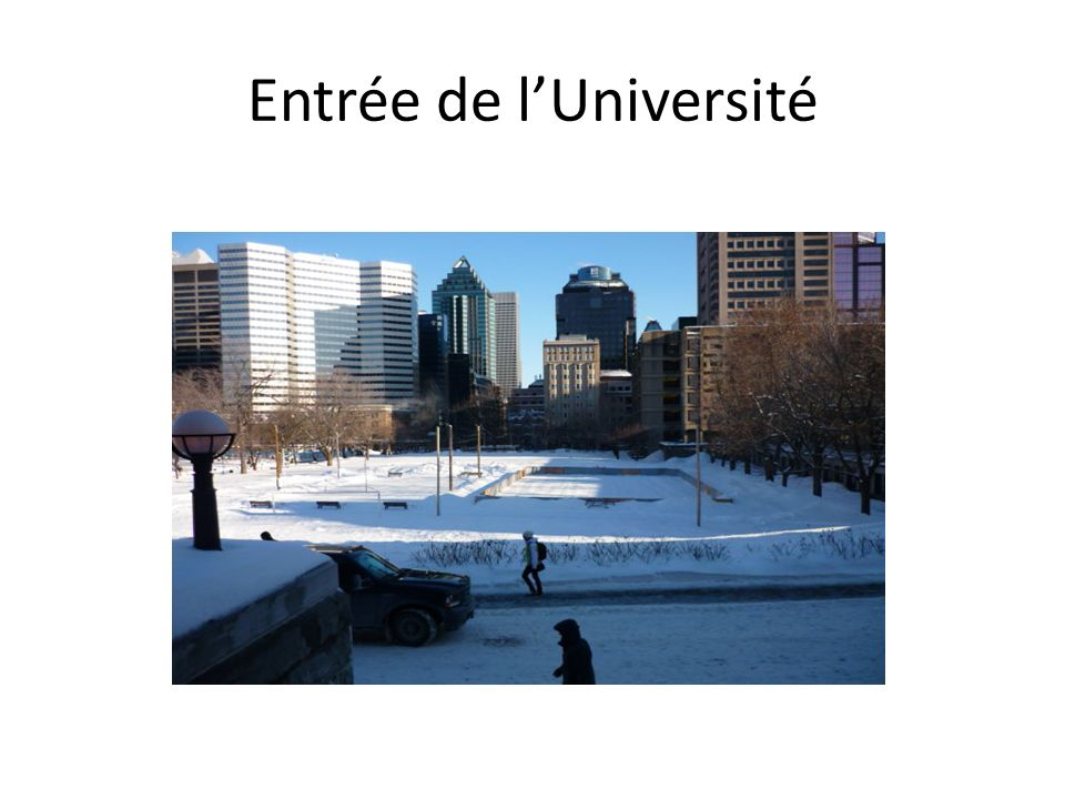 LUniversité Mc Guill (prononcer Mégil)