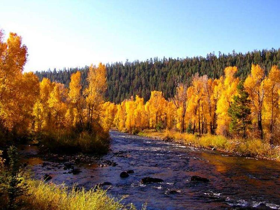 L'automne est un andante mélancolique et gracieux qui prépare admirablement le solennel adagio de l'hiver. (George Sand)