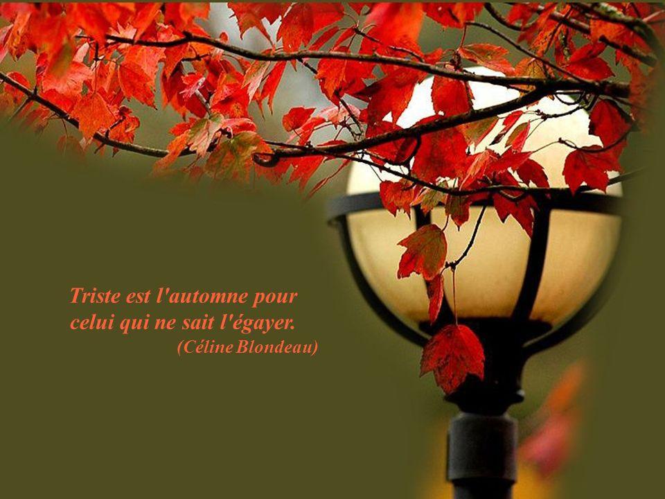 Triste est l automne pour celui qui ne sait l égayer. (Céline Blondeau)