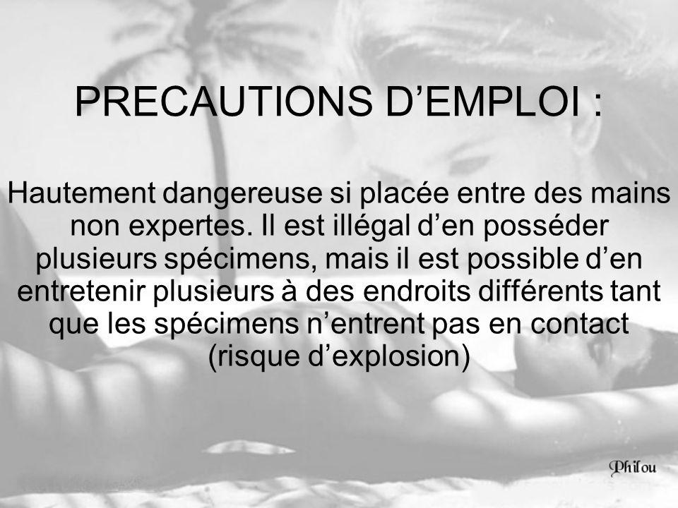 PRECAUTIONS DEMPLOI : Hautement dangereuse si placée entre des mains non expertes. Il est illégal den posséder plusieurs spécimens, mais il est possib