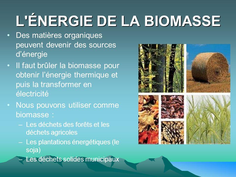 L'ÉNERGIE DE LA BIOMASSE Des matières organiques peuvent devenir des sources dénergie Il faut brûler la biomasse pour obtenir lénergie thermique et pu