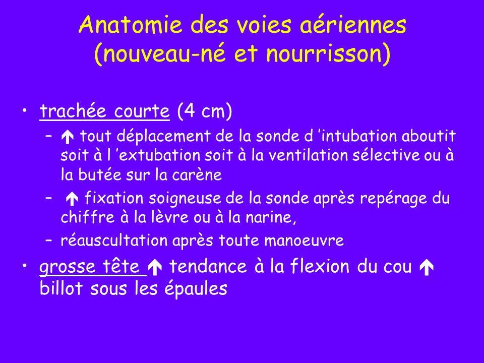 Anatomie des voies aériennes (nouveau-né et nourrisson) trachée courte (4 cm) – tout déplacement de la sonde d intubation aboutit soit à l extubation