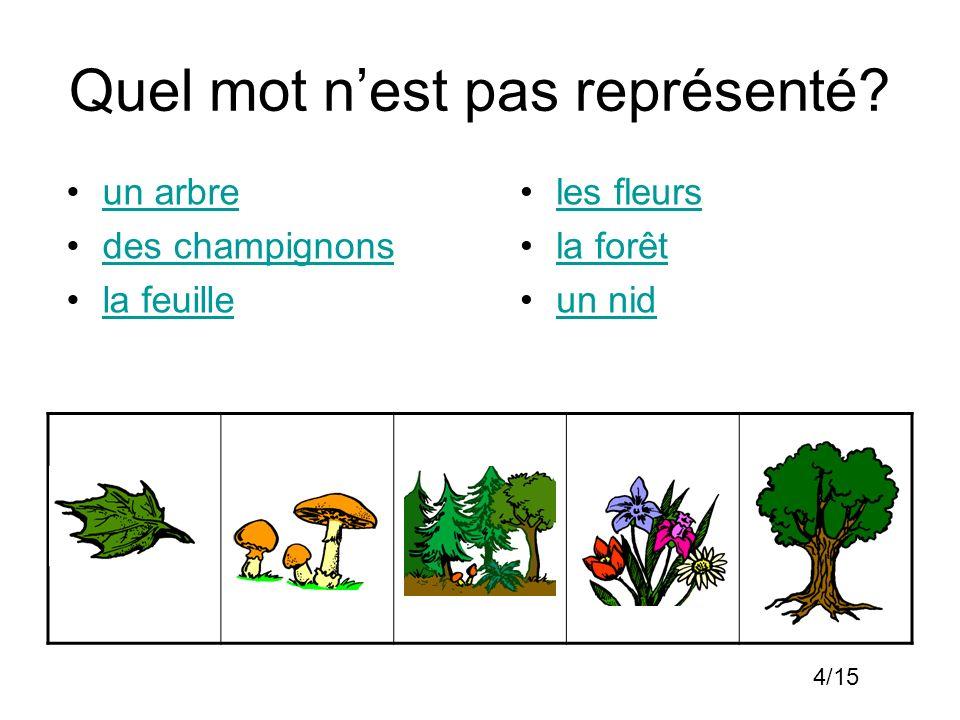 Quel mot nest pas représenté? un arbre des champignons la feuille les fleurs la forêt un nid 4/15