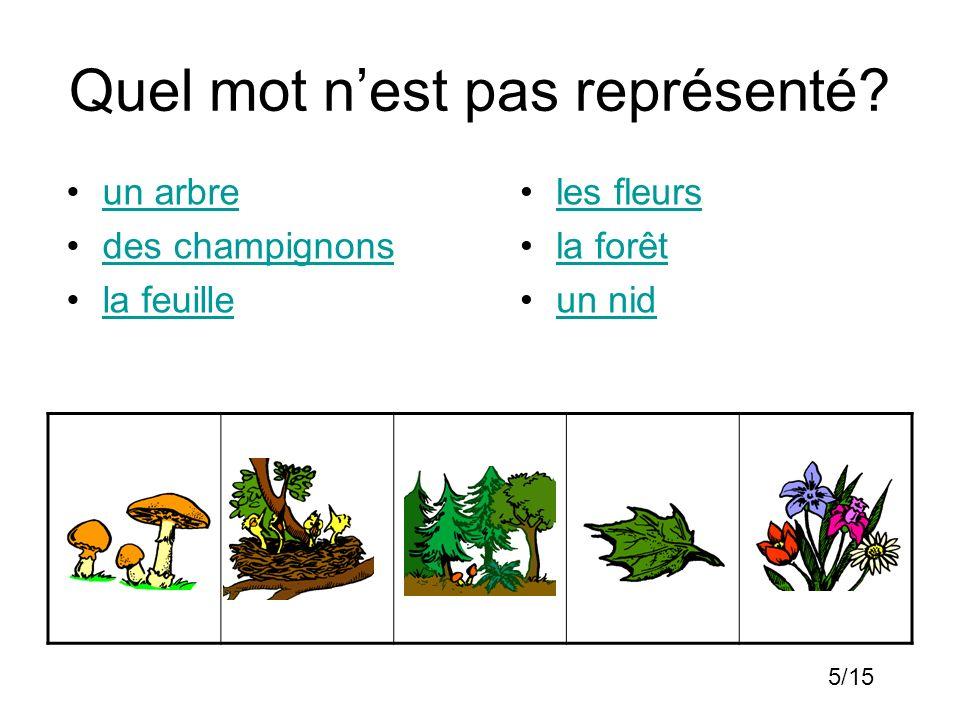 Quel mot nest pas représenté? un arbre des champignons la feuille les fleurs la forêt un nid 5/15
