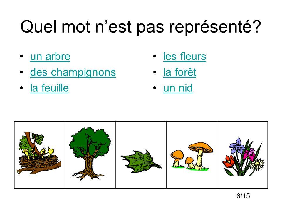 Quel mot nest pas représenté? un arbre des champignons la feuille les fleurs la forêt un nid 6/15