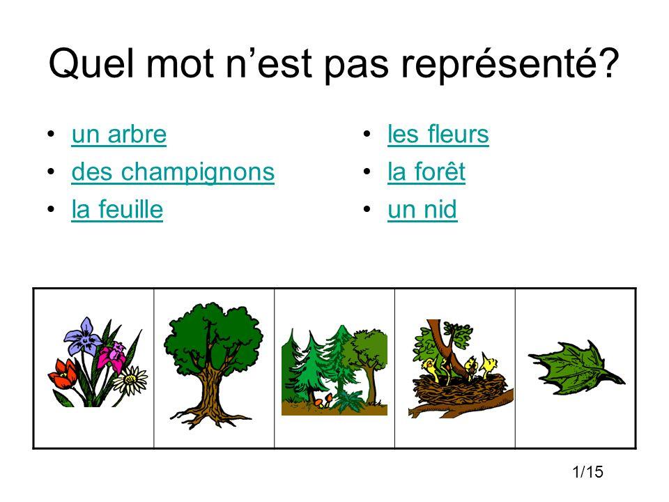 Quel mot nest pas représenté? un arbre des champignons la feuille les fleurs la forêt un nid 1/15
