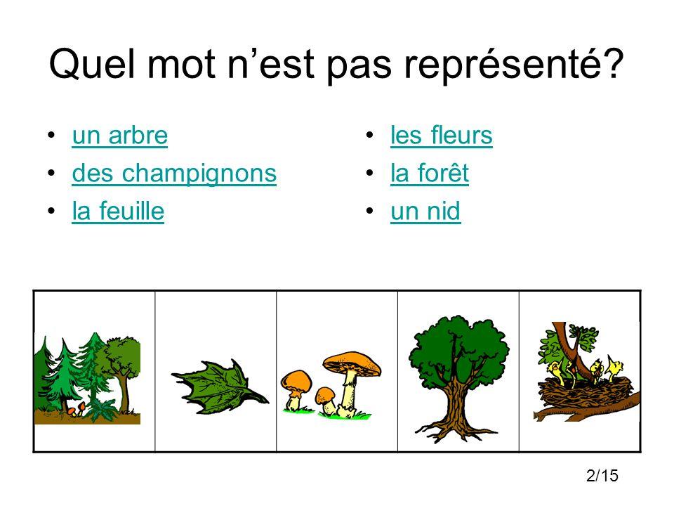 Quel mot nest pas représenté? un arbre des champignons la feuille les fleurs la forêt un nid 2/15