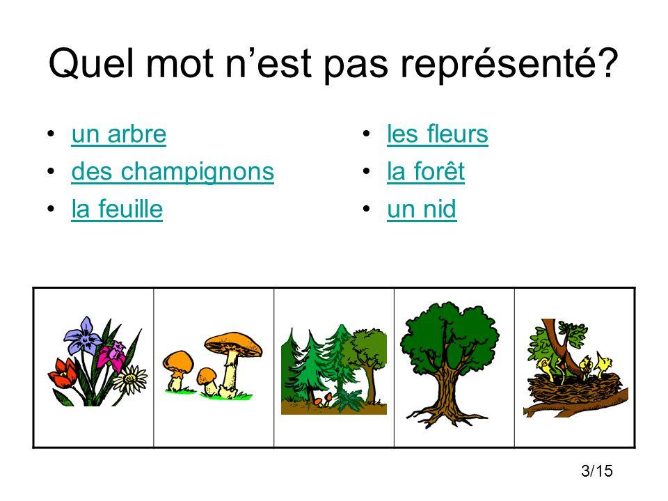 Quel mot nest pas représenté? un arbre des champignons la feuille les fleurs la forêt un nid 3/15