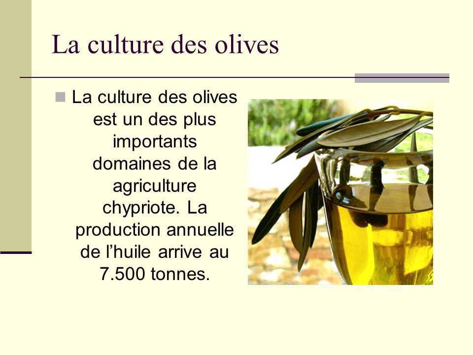 La culture des olives La culture des olives est un des plus importants domaines de la agriculture chypriote. La production annuelle de lhuile arrive a