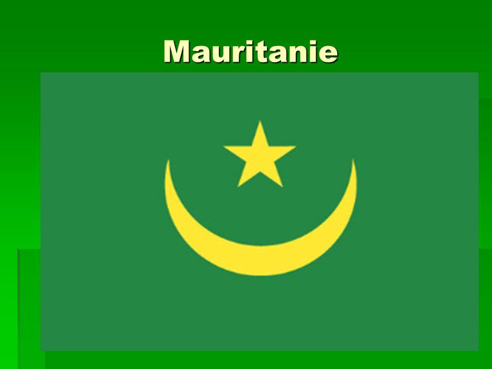 Pratiques rituelles durant lenfance Apprentissage graduel des versets coraniques Apprentissage graduel des versets coraniques Commencer à aller aux mosquées Commencer à aller aux mosquées