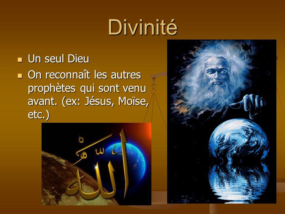 Coran 5 piliers de lislam Reconnaître quil y a quun seul dieu et que Mohamed est un prophète Effectuer la prière obligatoire Faire le ramadan Payer laumône obligatoire Effectuer le pèlerinage à la Mecque Les versets coraniques sont des sourates