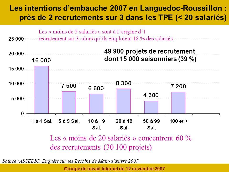Les intentions dembauche 2007 en Languedoc-Roussillon : près de 2 recrutements sur 3 dans les TPE (< 20 salariés) Source :ASSEDIC, Enquête sur les Besoins de Main-dœuvre 2007 49 900 projets de recrutement dont 15 000 saisonniers (39 %) Les « moins de 5 salariés » sont à lorigine d1 recrutement sur 3, alors quils emploient 18 % des salariés Les « moins de 20 salariés » concentrent 60 % des recrutements (30 100 projets) Groupe de travail Internet du 12 novembre 2007