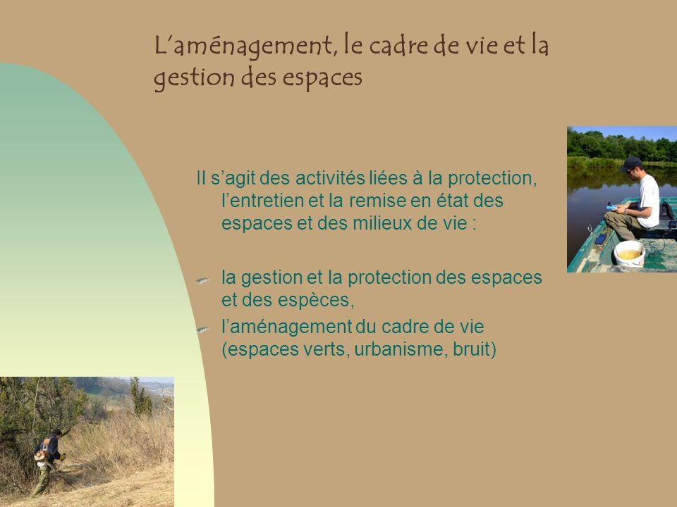 Laménagement, le cadre de vie et la gestion des espaces Il sagit des activités liées à la protection, lentretien et la remise en état des espaces et d