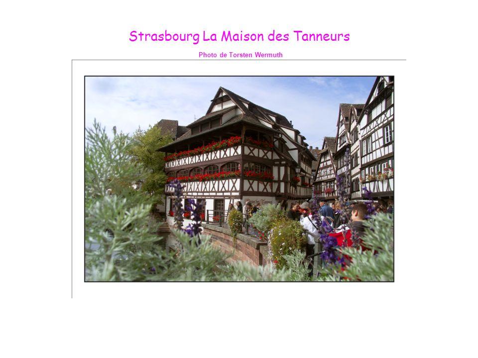 Strasbourg La Maison des Tanneurs Photo de Torsten Wermuth