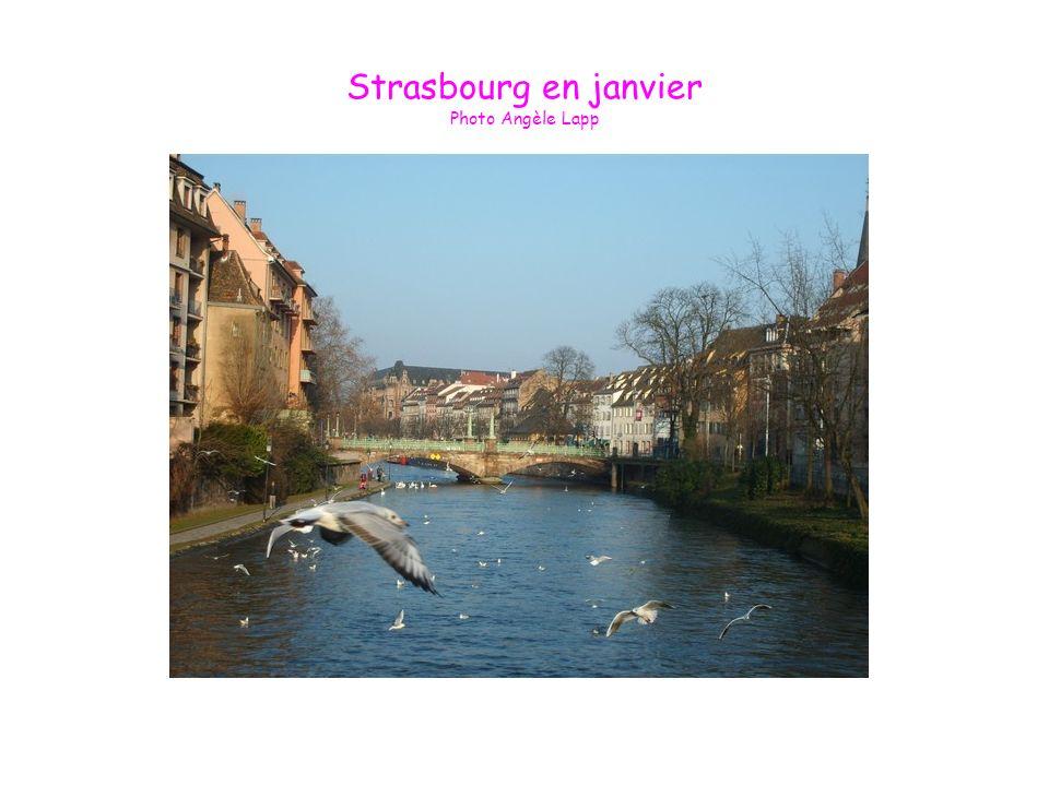 Strasbourg en janvier Photo Angèle Lapp