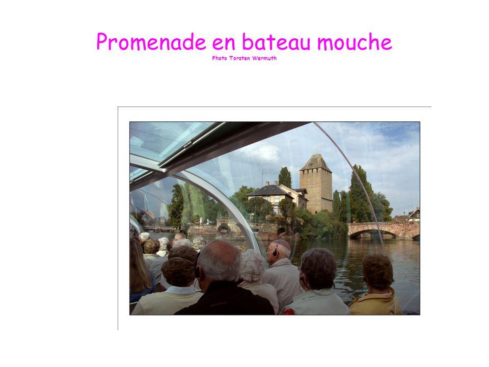 Diaporama réalisé par Angèle Lapp Gîte Chez Angèle 6 rue dOlwisheim 67370 Berstett – Alsace - France Tél : 03 88 69 42 56 site perso http://www.gite-alsace-chezangele.fr e-mail angele.lapp@neuf.frhttp://www.gite-alsace-chezangele.frangele.lapp@neuf.fr