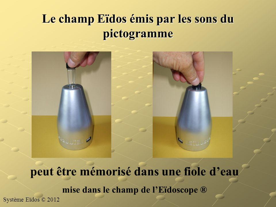 Le champ Eïdos émis par les sons du pictogramme peut être mémorisé dans une fiole deau mise dans le champ de lEïdoscope ® Système Eïdos © 2012