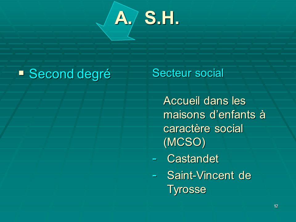 12 Second degré Second degré Secteur social Accueil dans les maisons denfants à caractère social (MCSO) - Castandet - Saint-Vincent de Tyrosse A. S.H.