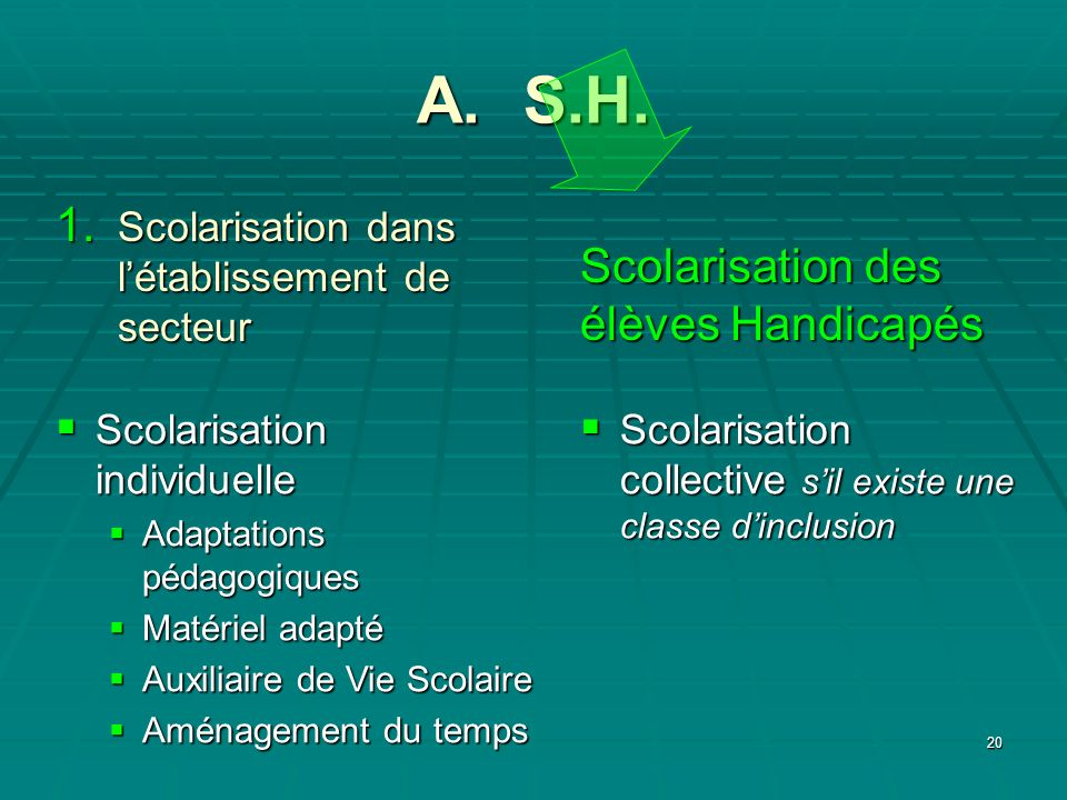 20 A. S.H. Scolarisation collective sil existe une classe dinclusion Scolarisation collective sil existe une classe dinclusion Scolarisation des élève