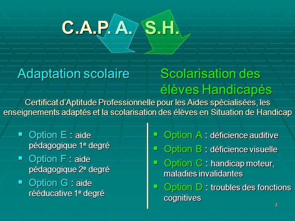 3 A. S.H. Certificat dAptitude Professionnelle pour les Aides spécialisées, les enseignements adaptés et la scolarisation des élèves en Situation de H