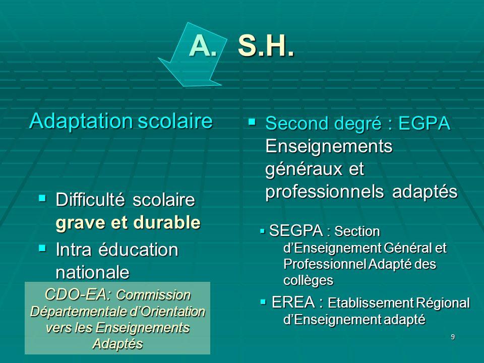 9 A. S.H. Adaptation scolaire Difficulté scolaire grave et durable Difficulté scolaire grave et durable Intra éducation nationale Intra éducation nati