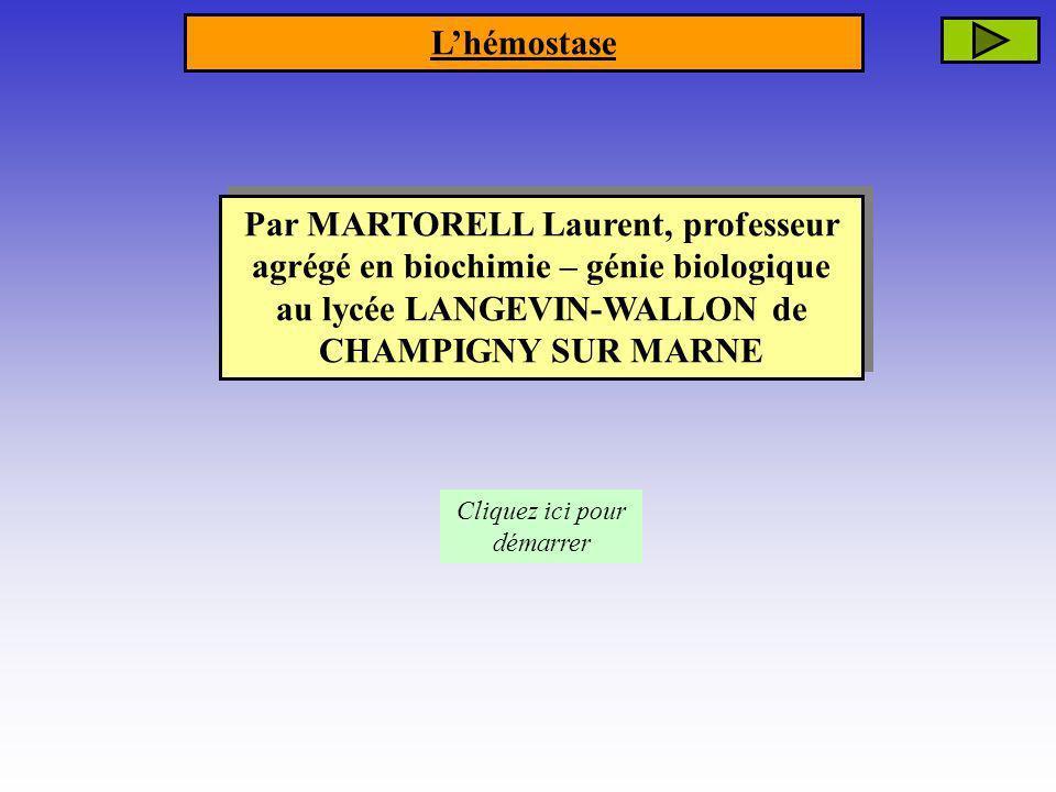 Par MARTORELL Laurent, professeur agrégé en biochimie – génie biologique au lycée LANGEVIN-WALLON de CHAMPIGNY SUR MARNE Cliquez ici pour démarrer Lhé
