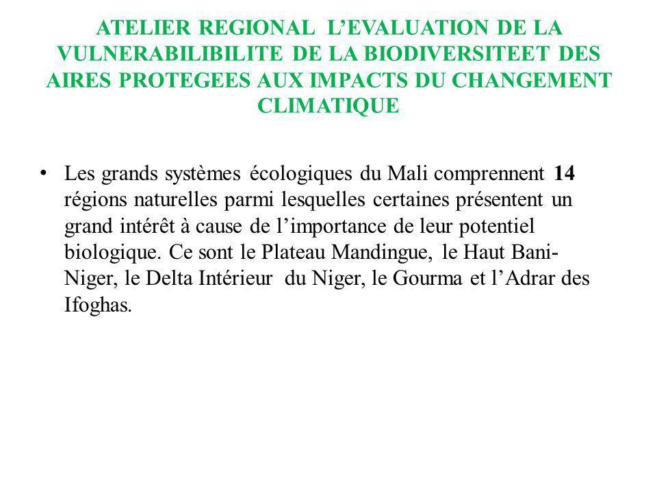 ATELIER REGIONAL LEVALUATION DE LA VULNERABILIBILITE DE LA BIODIVERSITEET DES AIRES PROTEGEES AUX IMPACTS DU CHANGEMENT CLIMATIQUE Les grands systèmes