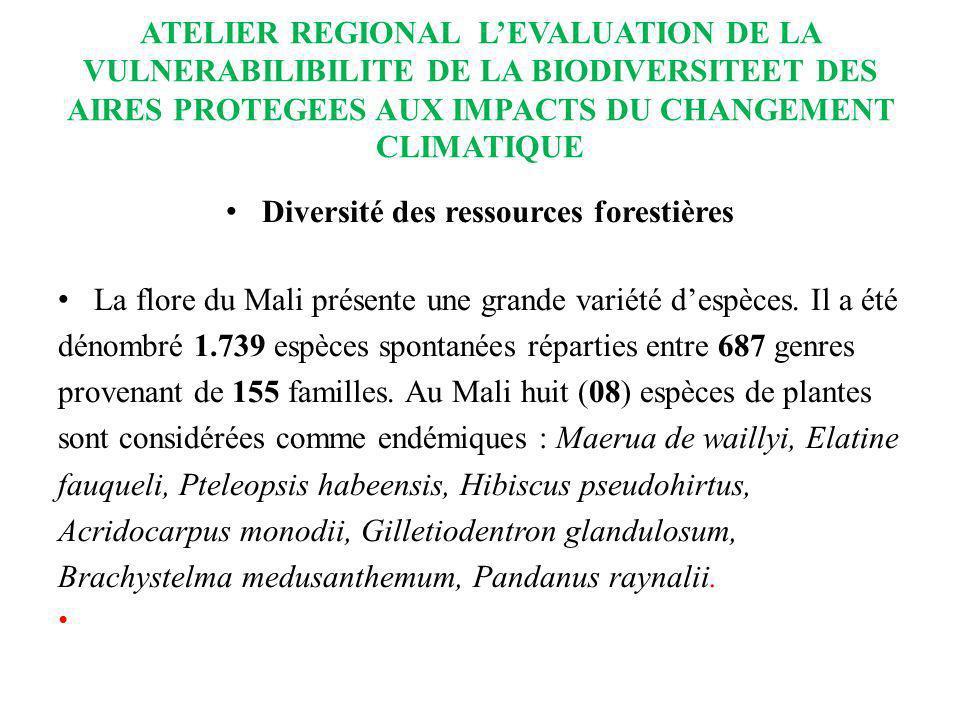 ATELIER REGIONAL LEVALUATION DE LA VULNERABILIBILITE DE LA BIODIVERSITEET DES AIRES PROTEGEES AUX IMPACTS DU CHANGEMENT CLIMATIQUE Diversité des resso