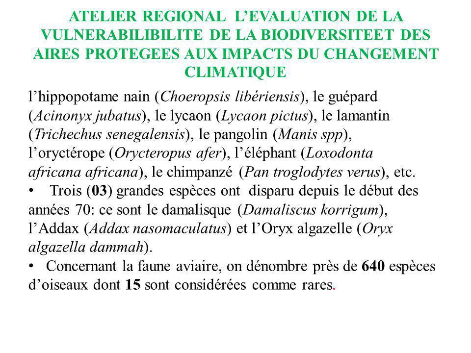ATELIER REGIONAL LEVALUATION DE LA VULNERABILIBILITE DE LA BIODIVERSITEET DES AIRES PROTEGEES AUX IMPACTS DU CHANGEMENT CLIMATIQUE lhippopotame nain (