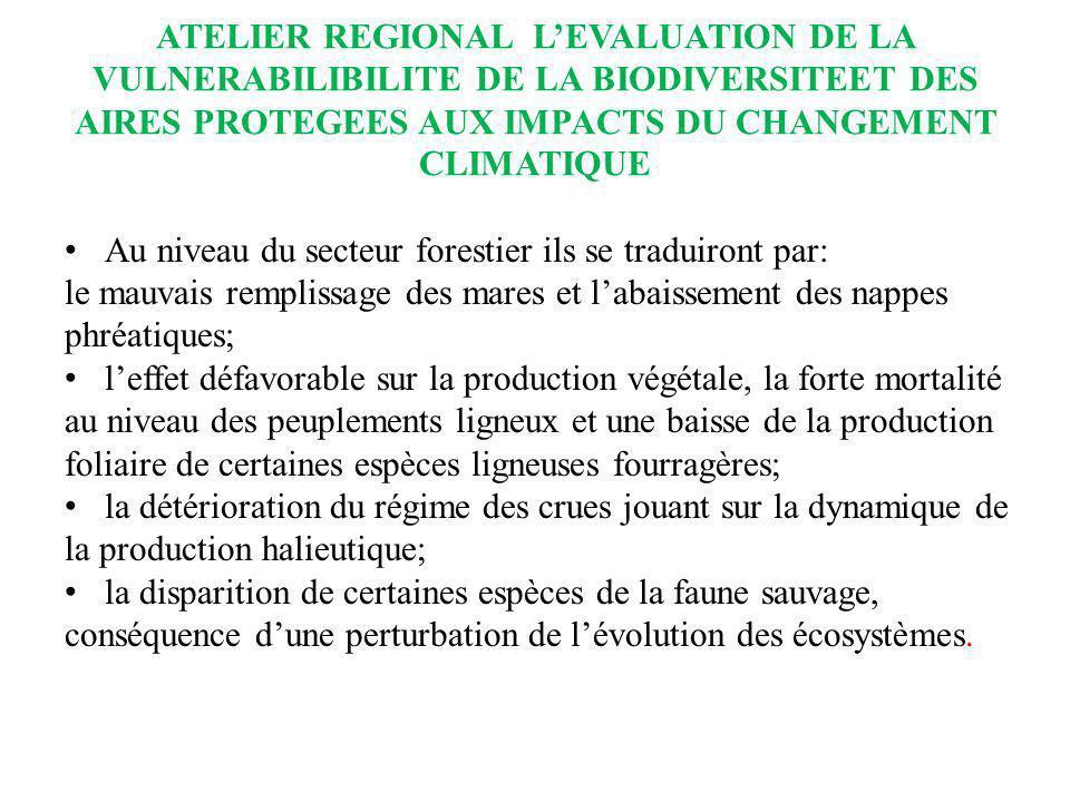 ATELIER REGIONAL LEVALUATION DE LA VULNERABILIBILITE DE LA BIODIVERSITEET DES AIRES PROTEGEES AUX IMPACTS DU CHANGEMENT CLIMATIQUE Au niveau du secteu