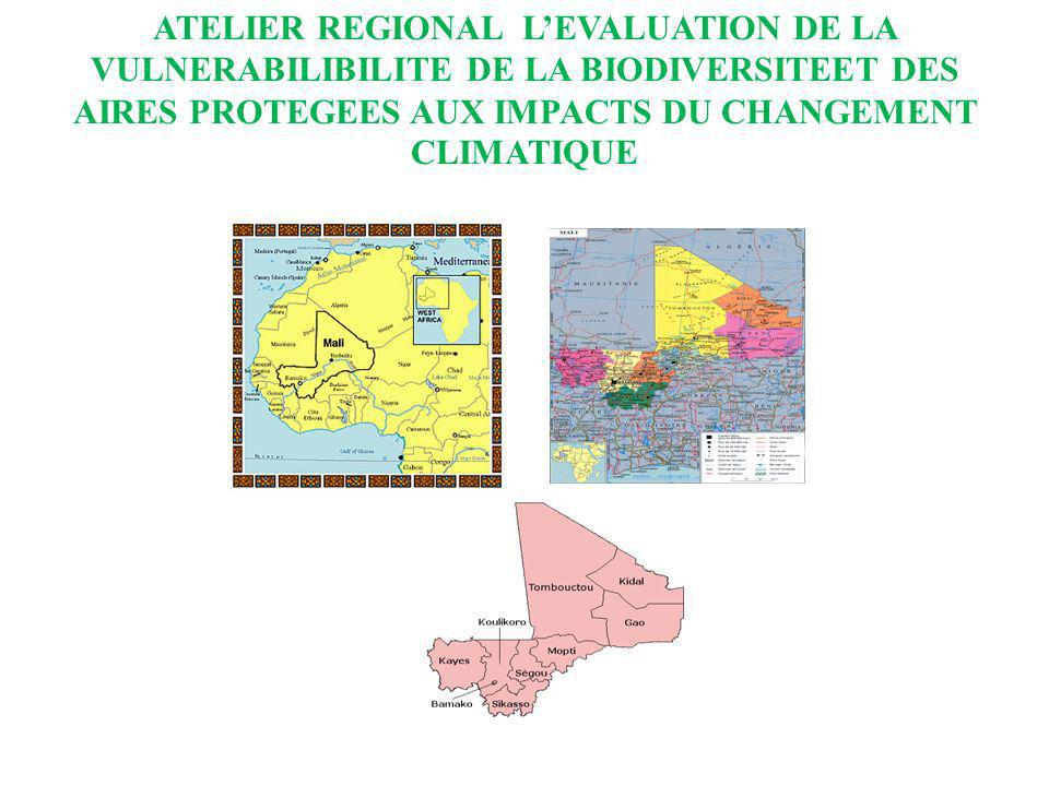 ATELIER REGIONAL LEVALUATION DE LA VULNERABILIBILITE DE LA BIODIVERSITEET DES AIRES PROTEGEES AUX IMPACTS DU CHANGEMENT CLIMATIQUE LA PRISE EN COMPTE ET LA PLANIFICATION DE LADAPTATION AU CHANGEMENT CLIMATIQUE PAR LE GOUVERNEMENT AFIN DATTENUER LES IMPACTS SUR LES AIRES PROTEGEES.