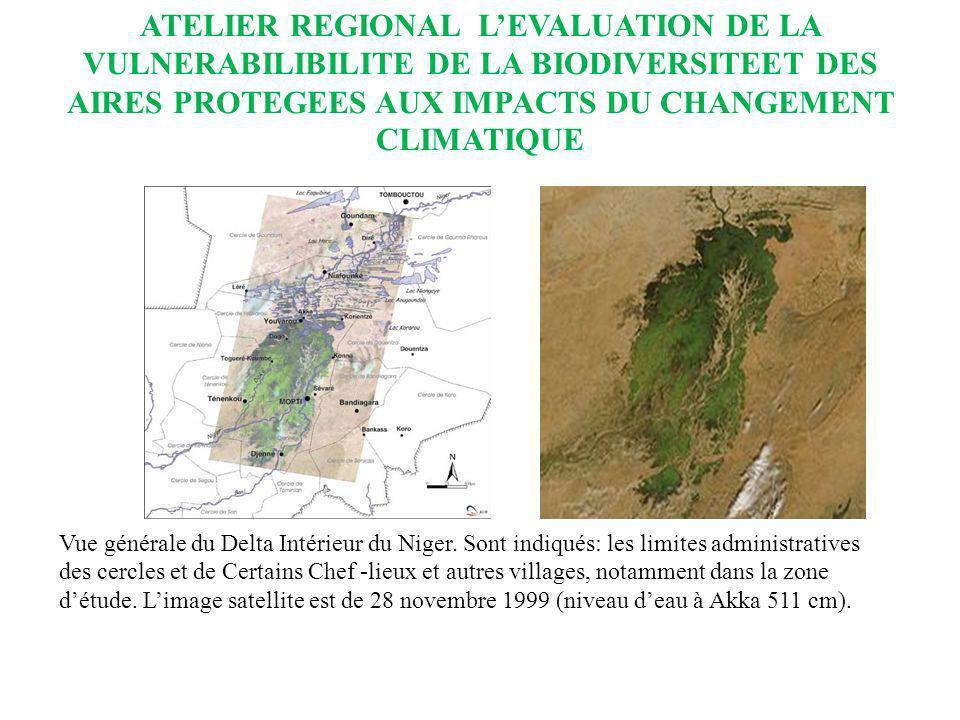 ATELIER REGIONAL LEVALUATION DE LA VULNERABILIBILITE DE LA BIODIVERSITEET DES AIRES PROTEGEES AUX IMPACTS DU CHANGEMENT CLIMATIQUE Dans le cadre des mesures dadaptation spécifique à lévolution du climat, le Mali a initié les activités suivantes : LAménagement et la réhabilitation des retenues deau ; Le boisement/reboisement/protection et la réhabilitation des berges des plans deau, la récupération des terres dégradées, la récupération des eaux de pluies et la fixation des dunes ; La création des points deau (forages, puits modernes etc…) ; Le développement des semences adaptées à la sécheresse ; Le développement des actions de recherche et développement ; Laménagement et la préparation des bas-fonds pour le développement de la riziculture et des cultures de contre saison ; Le développement de la gestion intégrée des eaux de surface par le bassin versant ;