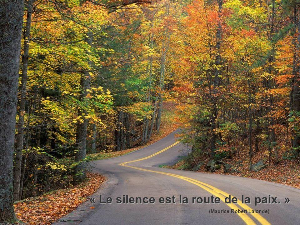 « Le silence est la route de la paix. » (Maurice Robert Lalonde)
