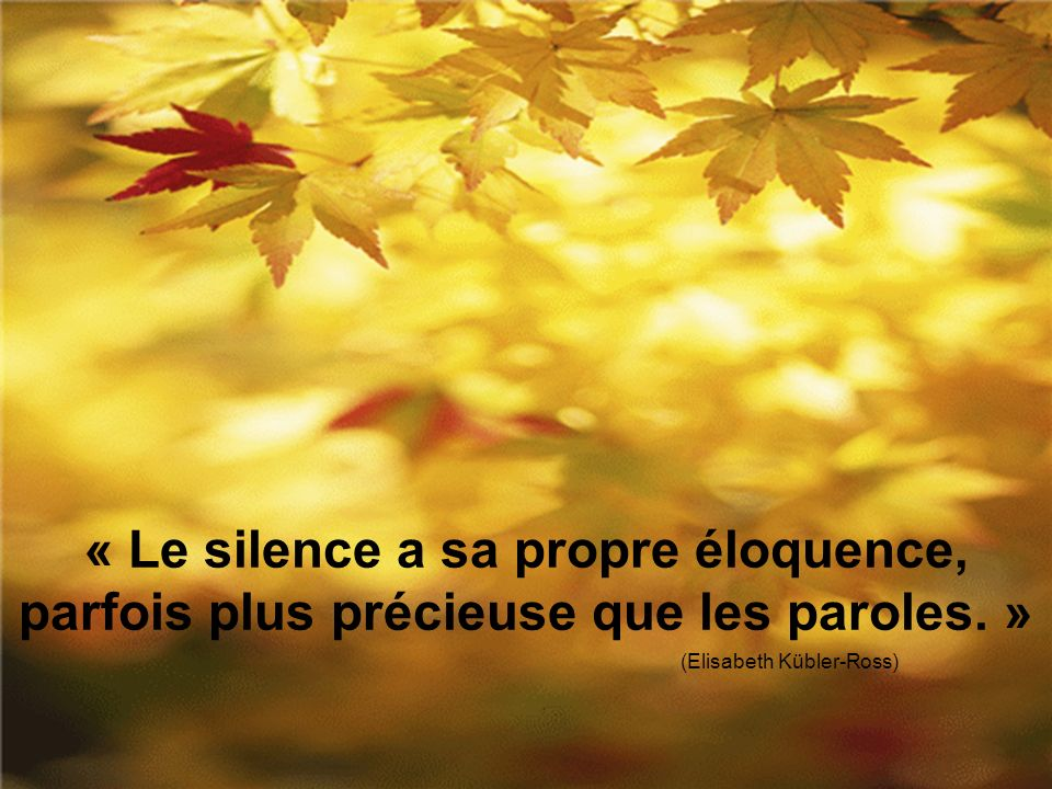« Le silence a sa propre éloquence, parfois plus précieuse que les paroles.