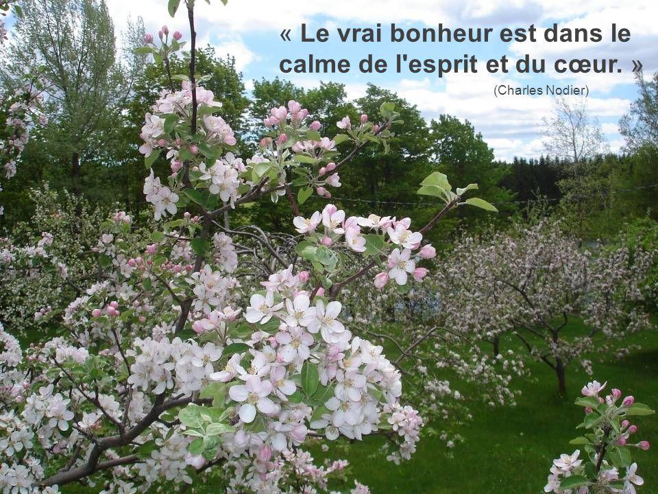 « Le vrai bonheur est dans le calme de l esprit et du cœur. » (Charles Nodier)
