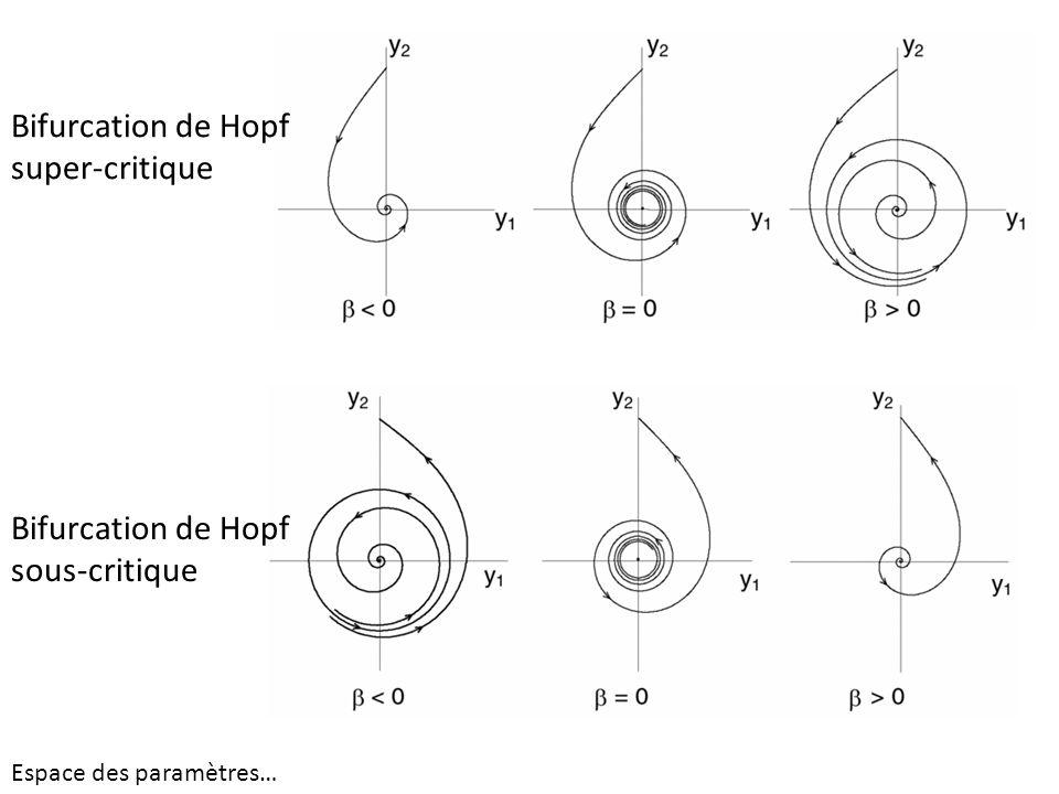 Bifurcation de Hopf super-critique Bifurcation de Hopf sous-critique Espace des paramètres…