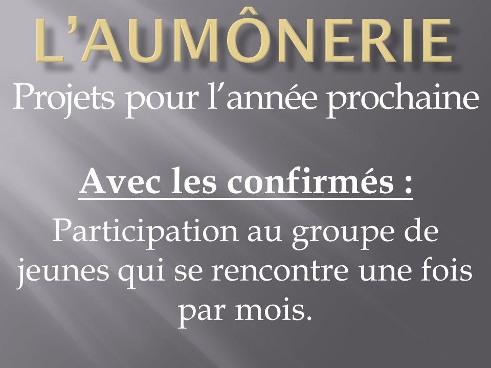 Projets pour lannée prochaine Avec les confirmés : Participation au groupe de jeunes qui se rencontre une fois par mois.