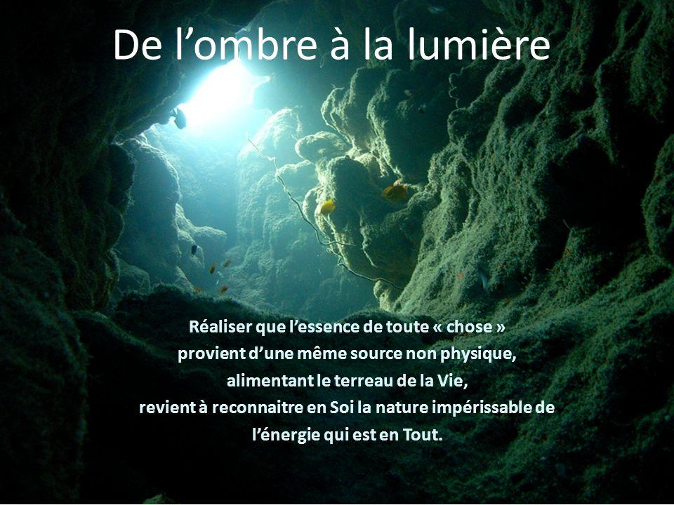 De lombre à la lumière Réaliser que lessence de toute « chose » provient dune même source non physique, alimentant le terreau de la Vie, revient à reconnaitre en Soi la nature impérissable de lénergie qui est en Tout.