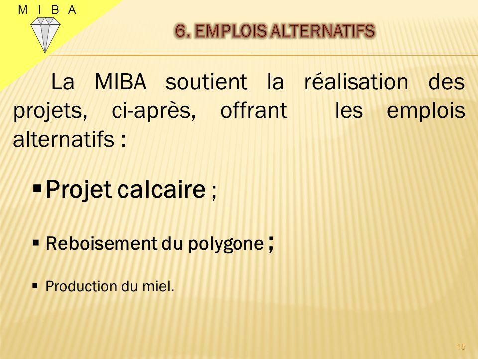 M I B A 14 Le Kasaï Oriental regorge dimportantes richesses naturelles et minières.