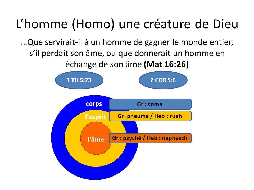 Lhomme (Homo) une créature de Dieu …Que servirait-il à un homme de gagner le monde entier, sil perdait son âme, ou que donnerait un homme en échange de son âme (Mat 16:26) 1 TH 5:232 COR 5:6 Gr : soma Gr :pneuma / Heb : ruah Gr : psyché / Heb : nephesch