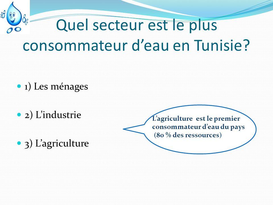 Quel secteur est le plus consommateur deau en Tunisie? 1) Les ménages 2) Lindustrie 3) Lagriculture Lagriculture est le premier consommateur deau du p