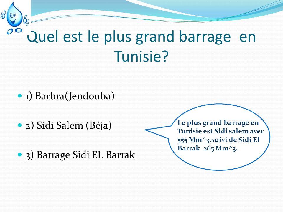 Quel est le plus grand barrage en Tunisie? 1) Barbra(Jendouba) 2) Sidi Salem (Béja) 3) Barrage Sidi EL Barrak Le plus grand barrage en Tunisie est Sid