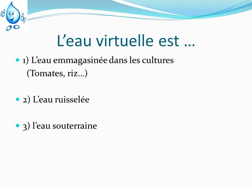 Leau virtuelle est … 1) Leau emmagasinée dans les cultures (Tomates, riz…) 2) Leau ruisselée 3) leau souterraine