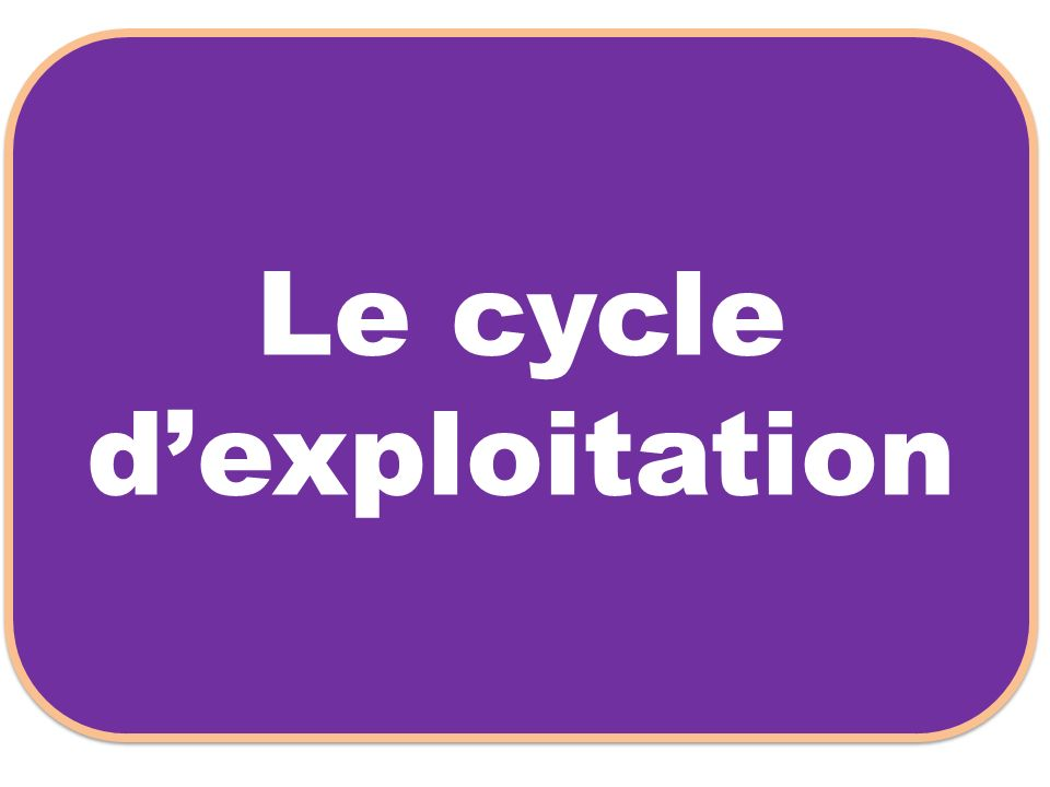 Le cycle dexploitation