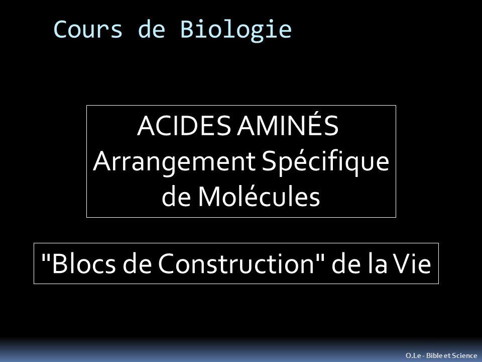 Cours de Biologie O.Le - Bible et Science ACIDES AMINÉS Arrangement Spécifique de Molécules Blocs de Construction de la Vie