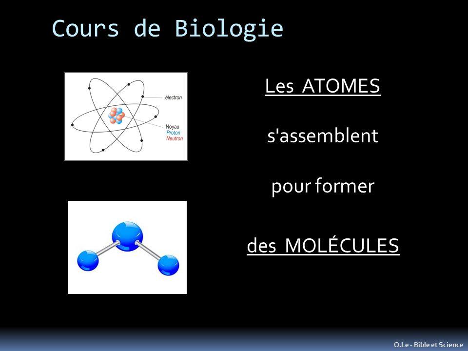 Cours de Biologie O.Le - Bible et Science Les ATOMES s'assemblent pour former des MOLÉCULES