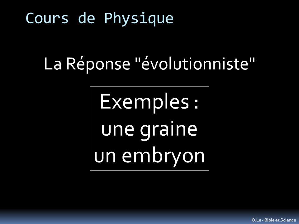 Cours de Physique O.Le - Bible et Science La Réponse évolutionniste Exemples : une graine un embryon