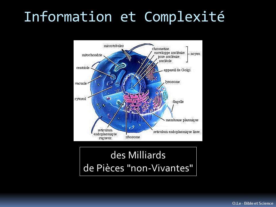 Information et Complexité O.Le - Bible et Science des Milliards de Pièces non-Vivantes