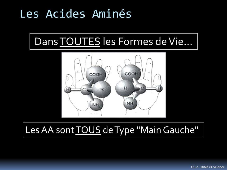Les Acides Aminés O.Le - Bible et Science Dans TOUTES les Formes de Vie… Les AA sont TOUS de Type Main Gauche