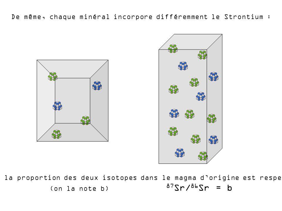 De même, chaque minéral incorpore différemment le Strontium : Mais la proportion des deux isotopes dans le magma dorigine est respectée (on la note b)